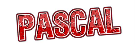 图片 Pay for Class-PascalCamp G9 TUE 19:00