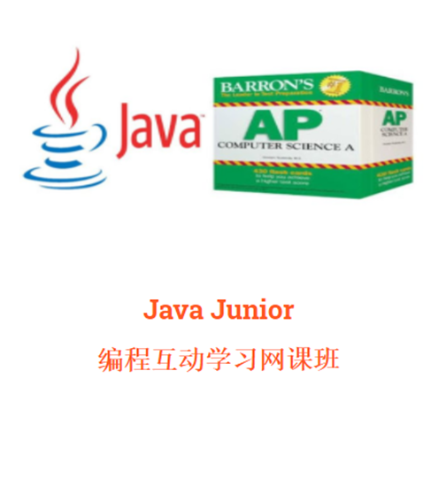 Picture of Pay for Class-Java Junior SUN 10:00